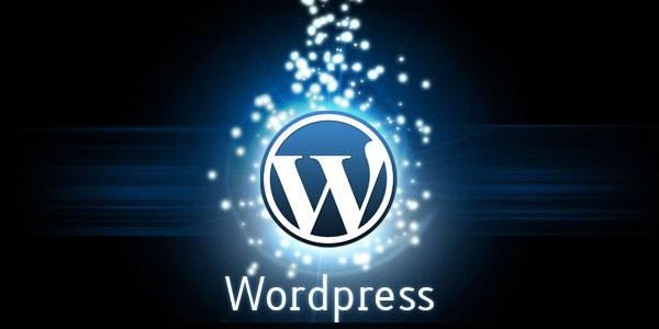 wordpress-plugins-600x300