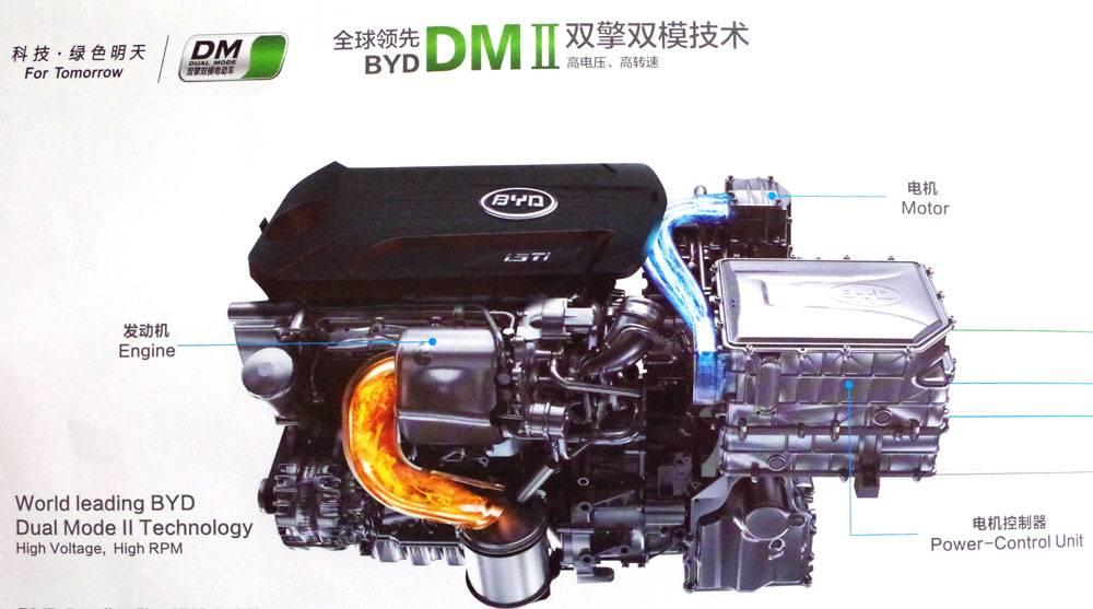 IMGP2065