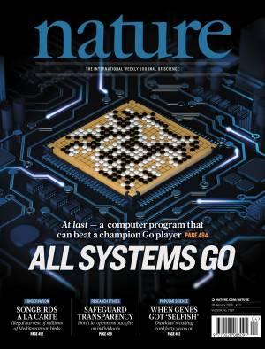 Google-Nature-chess-300x394