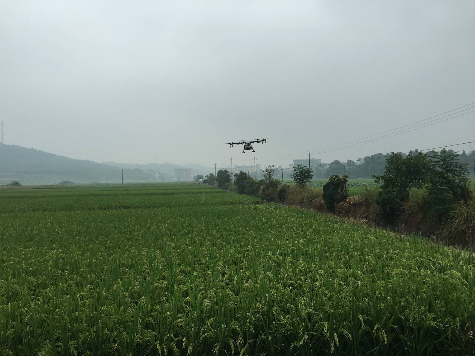 正在作业的大疆农业植保机 MG-1