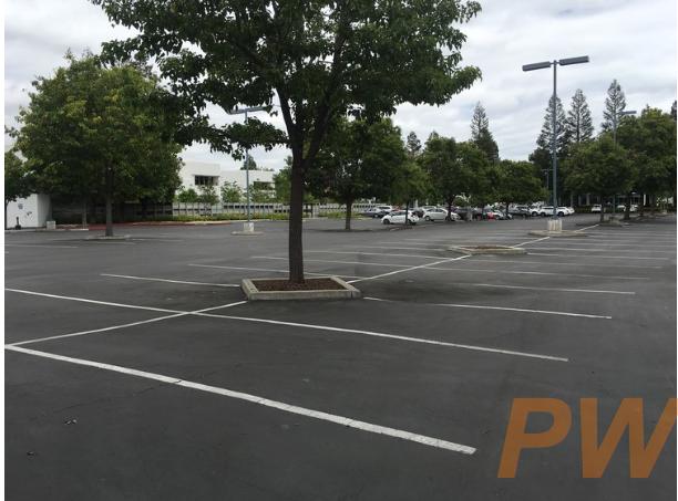 乐视硅谷园区空空荡荡的停车场