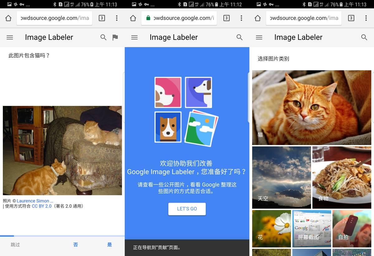 Google-photos-cats