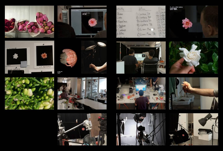 Apple Watch Face 壁纸个动画制作过程。图源:Wired