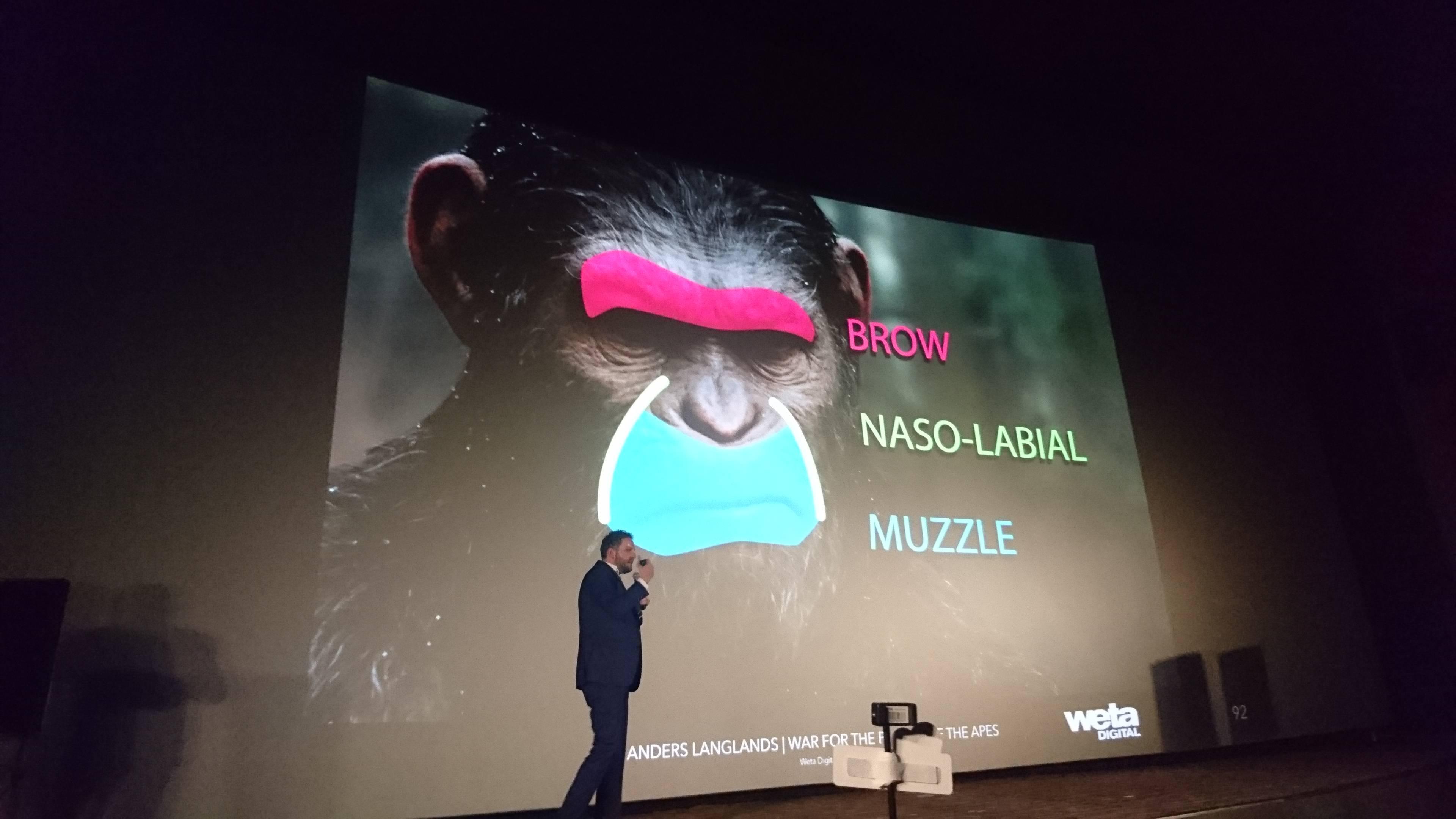 猩猩和人表情的区别