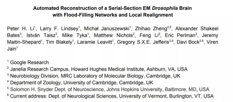 利用Flood-Filling网络和局部调整自动重建连续切片成像的果蝇大脑
