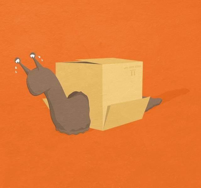 Homeless-Snail-Cargo