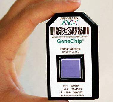 mit-gene-chip