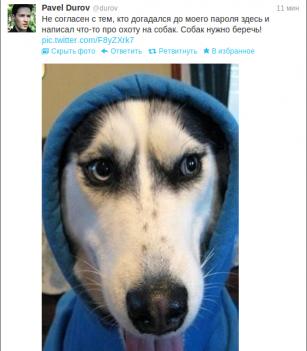 pavel-dog-tongue