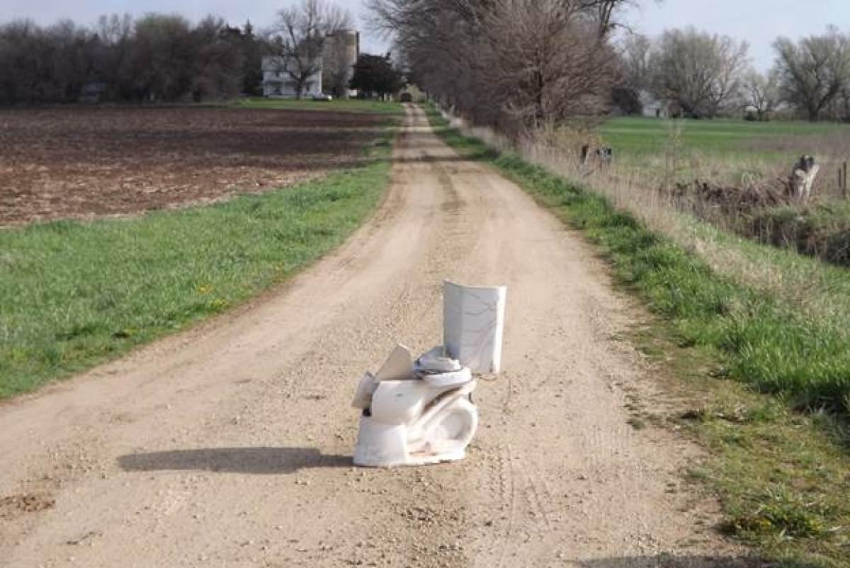 toilet-in-driveway